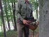 Guzaj hides in the Kozjansko forest
